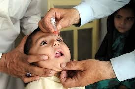Anti polio
